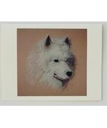 Samoyed Note Cards Dog Art Solomon - $12.50