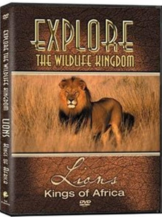 Explore the wildlife kingdom lions   kings of africa