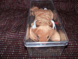 TY Beanie Baby Sly the Fox PVC Pellets Retired In Plastic Case NEW LAST ONE - $27.99