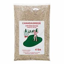 Canada Green Grass Lawn Seed-4 Lbs. Bag - $25.28