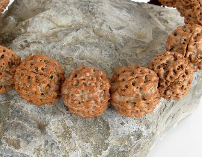 Free Shipping -  Tibetan Buddhism AAA natural Bodhi Seeds Prayer Beads charm bra