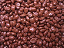 Sugar Free Chocolate Raisins, 10LBS - $64.95