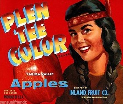 Plen T Color Apples Fruit Crate Label Art Print Yakina Valley Wapato Washingotn - $9.87