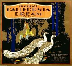 Fruit Crate Label California  Dream BIRD Peacock Sunkist  Art Print 1920s - $9.87