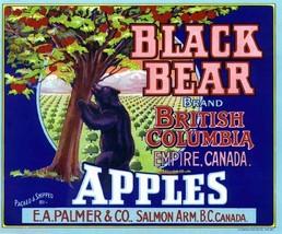 Black Bear Apples Crate Label Art Print E A Palmer & Co Salmon Arm B.C Canada - $9.87