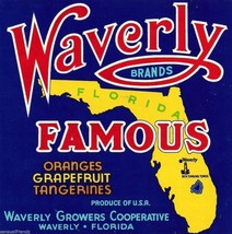 Fruit Crate Art Print  Waverly Famous Blue Citrus Grapefruit, Waverly Florida - $9.87