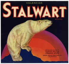 Stalwart Valencai Orange Crate Label Art Print Polar Bear Santa Paula Ventra Ca - $9.89