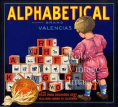 Alphabetical Sunkist Fruit Crate Label Art Print Villa Park  Orchards California - $8.30