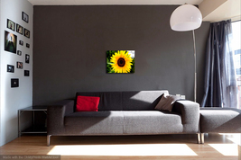 Sunflower 1  thumb200
