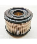 Briggs and Stratton Air Filter  390492 - $10.30