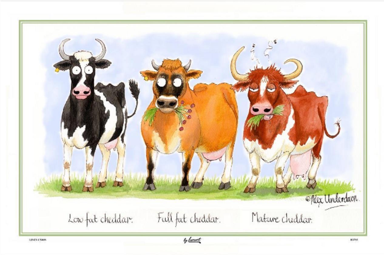 Samuel Lamont UK Cheddar Cows Comical Linen Union Kitchen Tea Towel