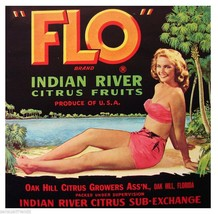 FLO Vintage Florida Citrus Crate Label Art Print Indian River Bikini Girl  SM - $9.87