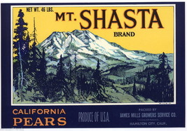 Mt Shasta Pears Fruit Crate Label Art Mills Growers Hamilton California - $9.87