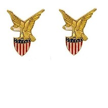 Eagle and American Flag Shield Pin Set of 2 Pin... - $8.86