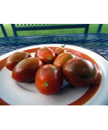 Danube - crunchy and very sweet grape tomato bred by  J&L Gardens - $5.00