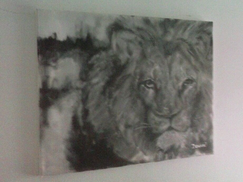 "Original 20"" Lion Contemporary Modern Decor Painting/ - rdoward fine art"