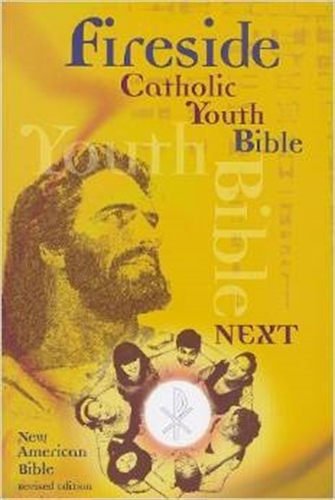 Fireside catholic youth bible next nabre softcover