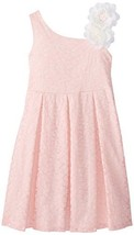 Bonnie Jean Little Girls' 2T-6X Pink Lace Dress (4, Pink) [Apparel]