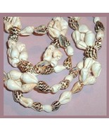 White and Brown Striped Strombus Sea Shell 30 inch Necklace - $29.99