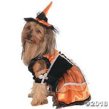 Small - Cat & Dog Costume Orange Witch Small  - $22.48