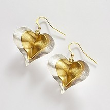 Double Heart Silver and Gold Tone Earring [Jewelry]