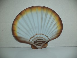 Pair Scallop Shell Shaped  Plates - $9.99