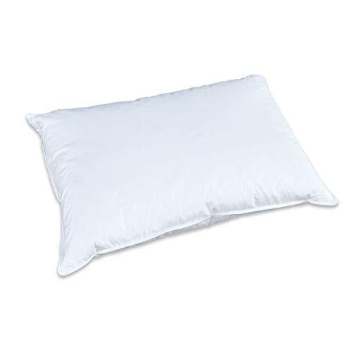 Creative FD Pillow, Queen
