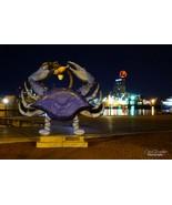 Crabby Boh - $39.99 - $64.99