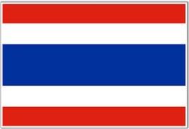 Thai Foreign Language Course Audio (MP3) + Workbook (PDF) on DVD - $3.11