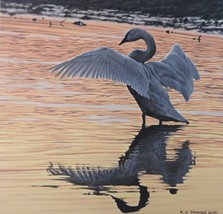 Evening Reflections by Ron Parker - $245.00