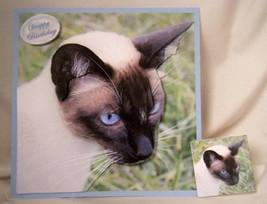 HANDMADE GREETING CARD - 3D SIAMESE BIRTHDAY GREETING ON BLUE - $6.95