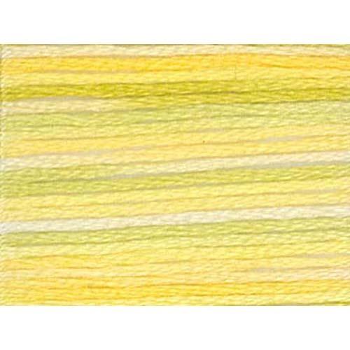 4080 daffodil fields variations