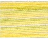 4080 daffodil fields variations thumb155 crop