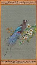 Prince Rudolph Blue Bird of Paradise Painting Handmade Indian Miniature ... - $104.99