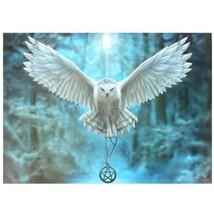 "Nemesis Now: Awake Your Magic Canvas on Wood Frame by Anne Stokes  20"" x... - €26,47 EUR"