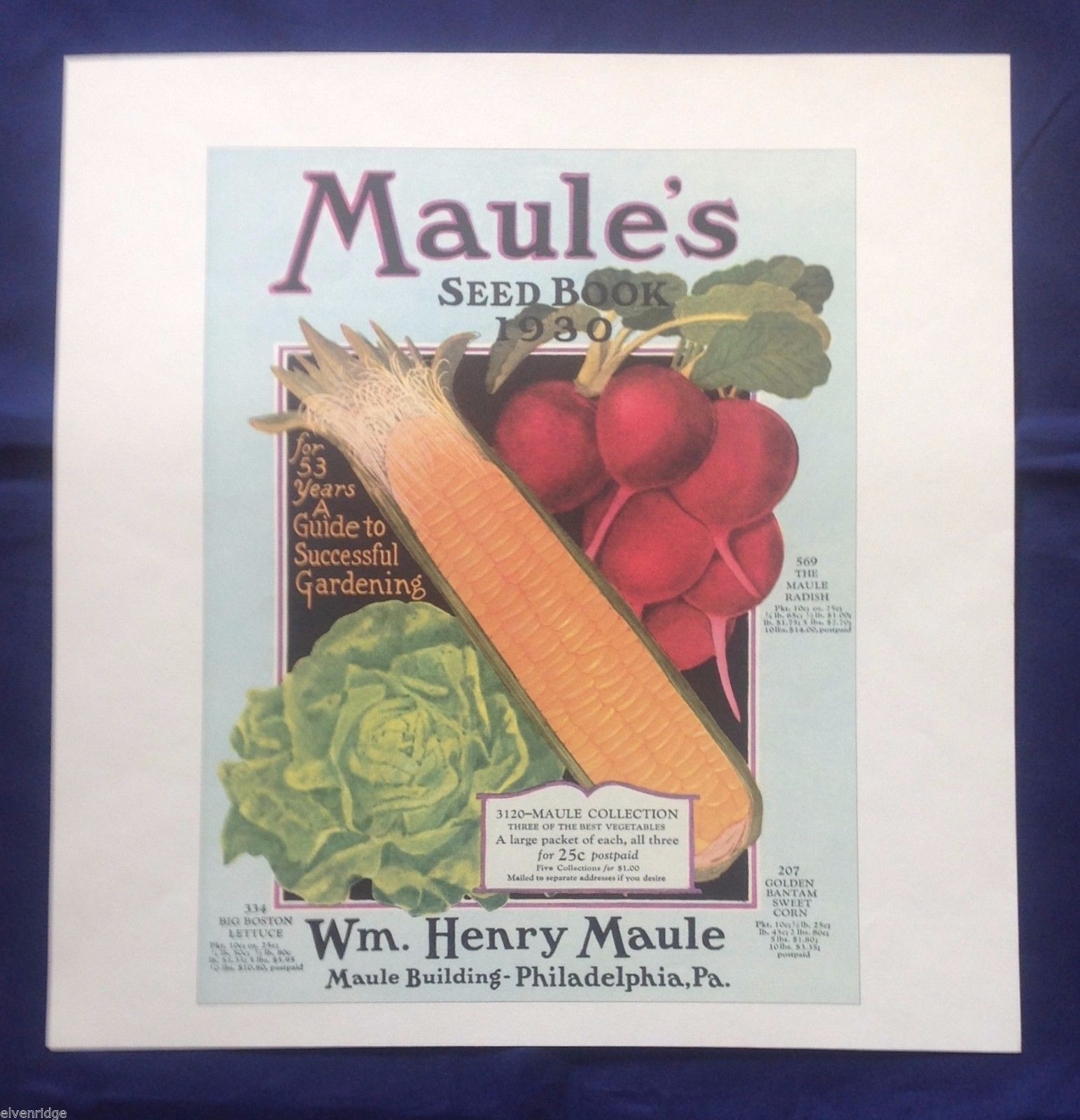H.W. Maule's Seed Book Garden Vegetables 1900s Reprint Poster