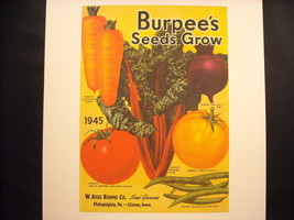 Vintage Color 1945 Ad Burpee's Seeds Grow Reprint Poster