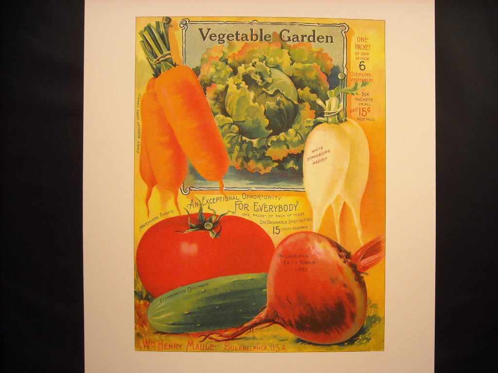 Vintage Color H.W. Maule's Seed Packet Garden Vegetables 1900s Reprint Poster
