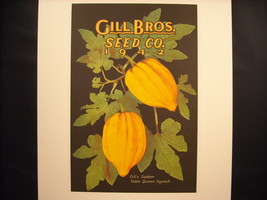 Vintage Color Catalogue cover for Gill Brothers Seed Co. 1942 Reprint Poster