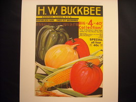 Vintage Color Seed Catalogue 1936 H.W. Buckbee Reprint Poster