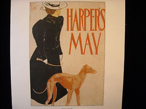 Vintage Italian Color Reprint Harper's 1897 Greyhound Dog Poster