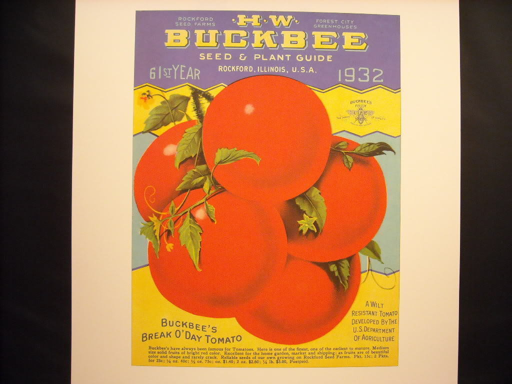 Vintage Reprint Color HW Buckbee Tomato Seed Plant Guide 1932 Poster