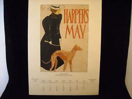 Vintage Italian Color Reprint Harper's 1897 Greyhound Dog Poster image 2