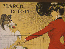 Vintage Italian Color Reprint Chicago Kennel Club Dog Poster 1902 image 5
