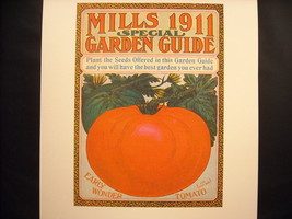 Vintage Color Mills 1911 Tomato Garden Seed Guide Reprint Poster