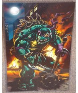 Teenage Mutant Ninja Turtles Slash Glossy Print 11 x 17 In Hard Plastic ... - $24.99