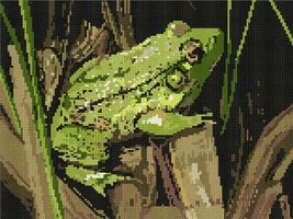 Toad Needlepoint Kit - $103.75