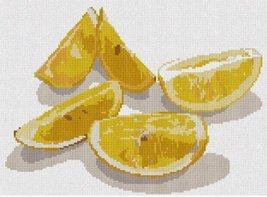 pepita Lemons Needlepoint Kit - $132.00