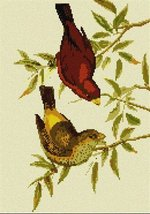 Scarlet Finch (Large) Needlepoint Kit - $130.50