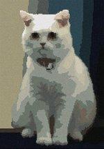 pepita British Shorthair (Large) Needlepoint Canvas - $107.00